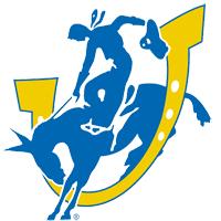 BJ Adesoga – D2 Southern Arkansas